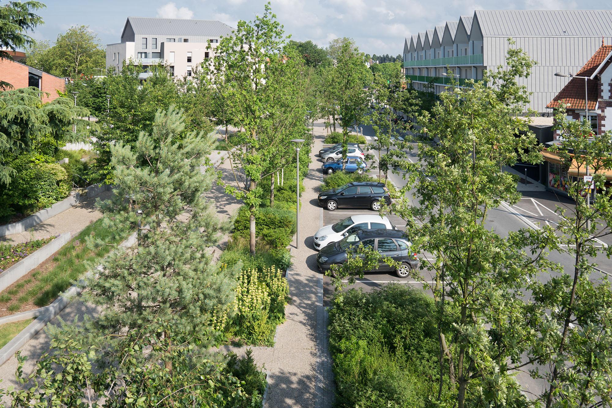Vue sur le cours et l'intégration paysagère du stationnement sur rue