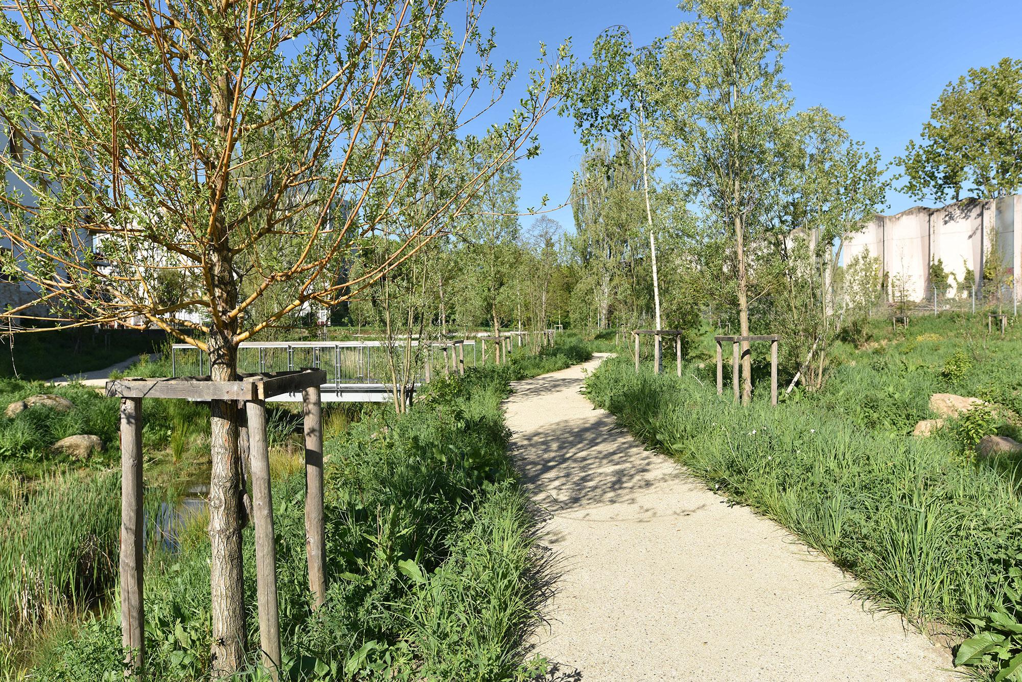 Vue sur la réserve écologique