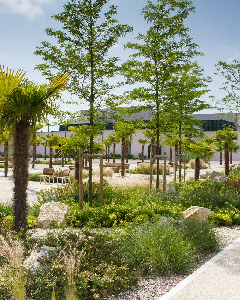 Les jardins de rocailles