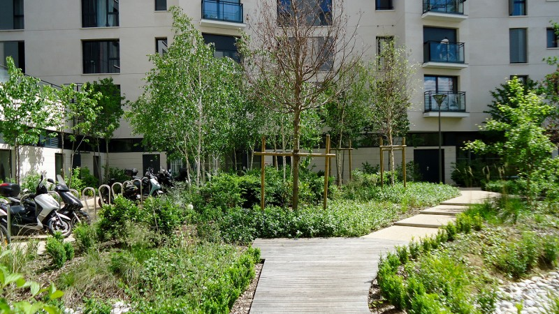 L'allée jardinée transverse et le patio