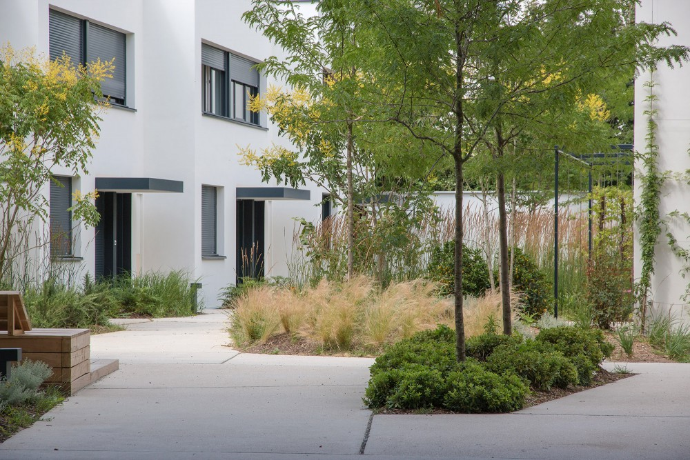 Vue depuis le porche principal sur le jardin chromatique et les maisons individuelles - Opération - Pantin Canal - Emerige