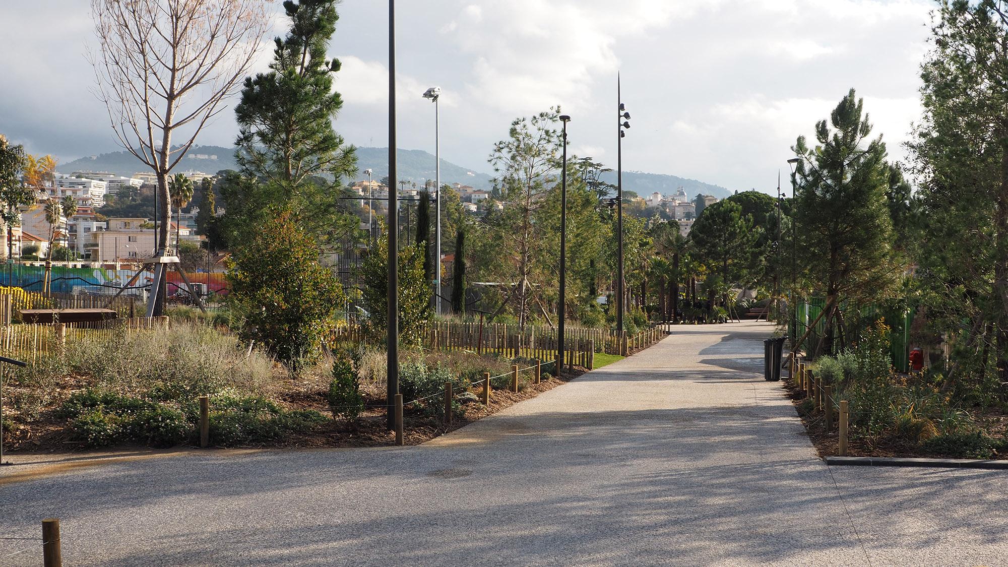 Parc du Ray - Nice - Paysage de garrigue sous pinède